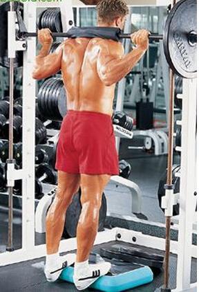 深蹲腿部肌肉磨炼要领 腿部肌肉磨炼负重提踵-追梦健身网