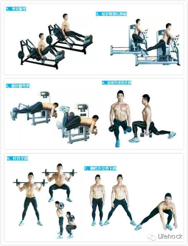 肌肉男子身上最具杀伤力的8块肌肉-追梦健身网