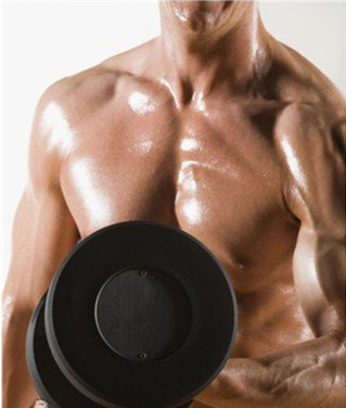 让肌肉增进的养分规律-追梦健身网