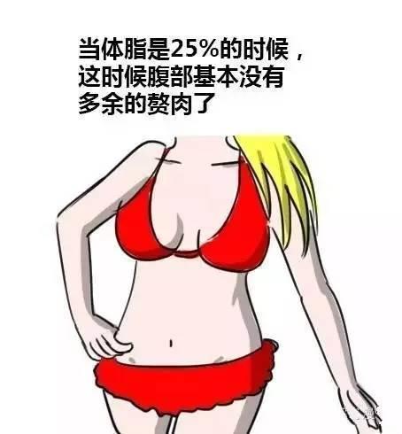 男女体脂对比图,你是哪种?-追梦健身网